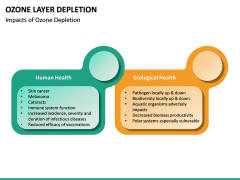 Ozone Layer Depletion PPT Slide 24