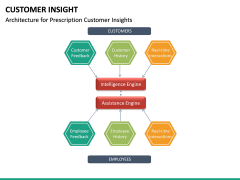 Customer Insight PPT Slide 30