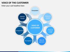 Voice of the Customer PPT Slide 3