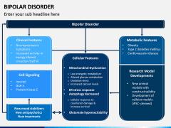 Bipolar Disorder PPT Slide 2