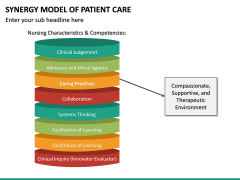 Synergy Model of Patient Care PPT Slide 10