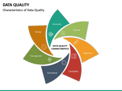 Data Quality PPT Slide 23