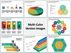 Total Quality Management Multicolor Combined