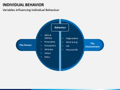 Individual Behavior PPT Slide 7