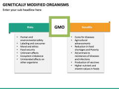 Genetically Modified Organisms (GMO) PPT Slide 23