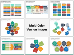 Program Management PPT Slide MC Combined