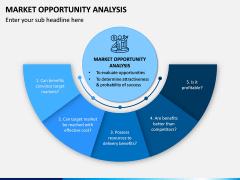 Market Opportunity PPT Slide 4