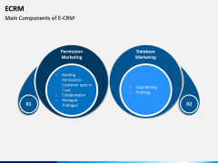 eCRM PPT Slide 8