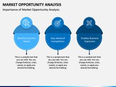 Market Opportunity PPT Slide 9