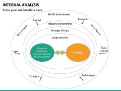 Internal Analysis PPT slide 24