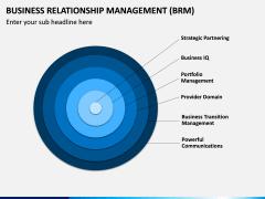 Business Relationship Management (BRM) PPT Slide 13