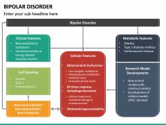 Bipolar Disorder PPT Slide 18