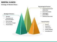 Mental illness PPT Slide 18