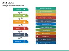 Life Stages PPT Slide 9