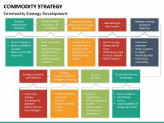 Commodity Strategy PPT Slide 13