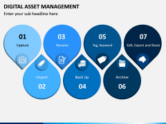 Digital Asset Management PPT Slide 9