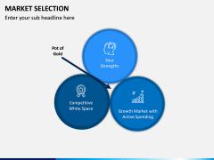 Market Selection PPT Slide 7