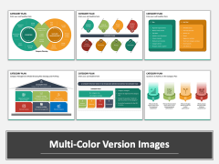 Category Plan Multicolor Combined
