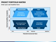 Project Portfolio Matrix PPT Slide 2