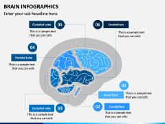 Brain Infographics PPT Slide 10