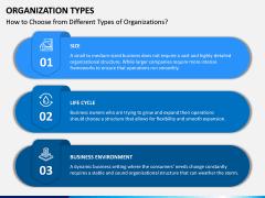 Organization Types PPT Slide 3