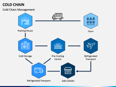 Cold Chain PPT Slide 4