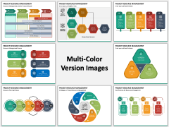 Project Resource Management Multicolor Combined