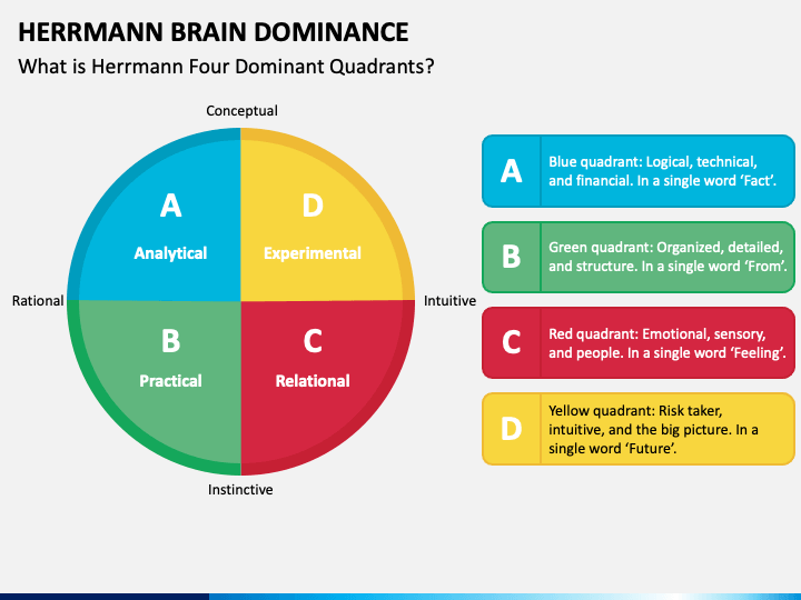 Herrmann Brain Dominance PPT Slide 1