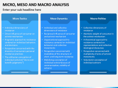 Micro Meso Macro Analysis PPT Slide 5