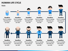 Human Life Cycle PPT Slide 3
