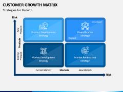 Customer Growth Matrix PPT Slide 4