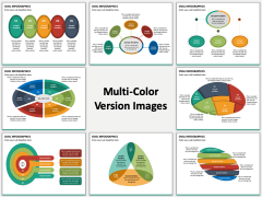 Oval Infographics Multicolor Combined
