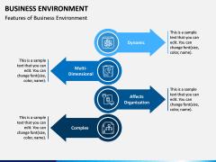 Business Environment PPT Slide 3