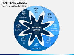 Healthcare Services PPT Slide 1