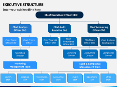 Executive Structure PPT Slide 1