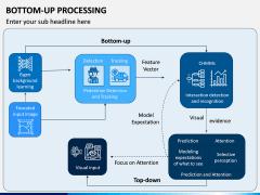 Bottom-Up Processing PPT Slide 5