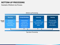 Bottom-Up Processing PPT Slide 4