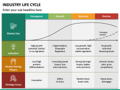 Industry Life Cycle PPT Slide 4