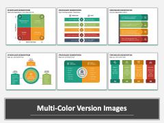 Stakeholder Segmentation Multicolor Combined