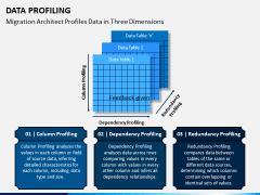 Data Profiling PPT Slide 8