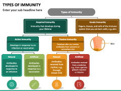 Types of Immunity PPT Slide 2
