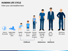 Human Life Cycle PPT Slide 4