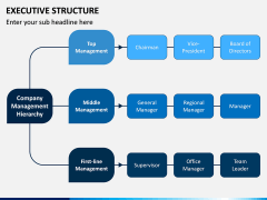 Executive Structure PPT Slide 5