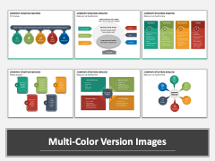 Company Situation Analysis Multicolor Combined