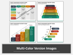 Project Management Maturity Model Multicolor Combined