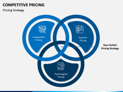 Competitive Pricing PPT Slide 11