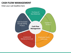 Cash Flow Management PPT Slide 12