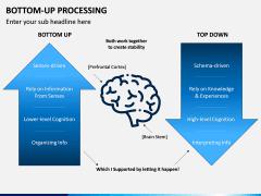 Bottom-Up Processing PPT Slide 1