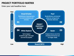 Project Portfolio Matrix PPT Slide 1