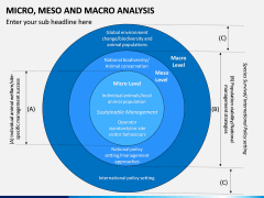 Micro Meso Macro Analysis PPT Slide 4